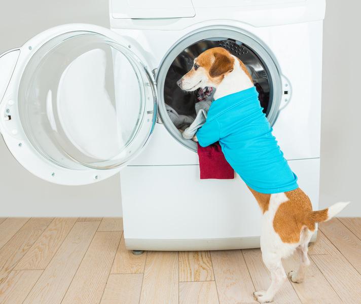 Как правильно пользоваться стиральной машиной: 15 полезных советов