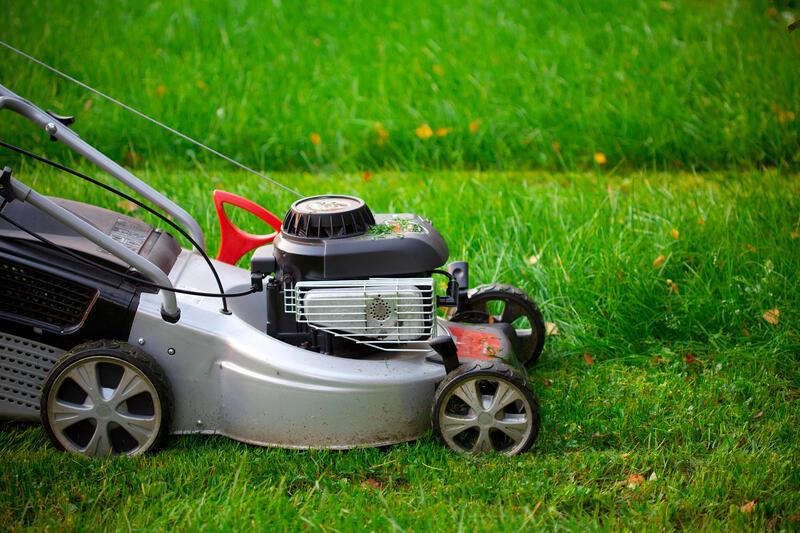 Мульчирование газона газонокосилкой — экономный агротехнический прием